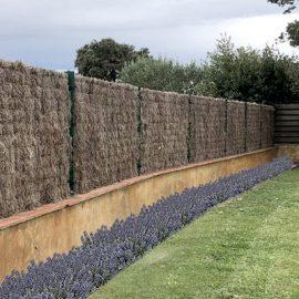 Brezo natural para cubrir valla